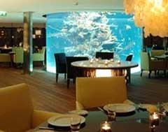 Yacht Club Aquarium