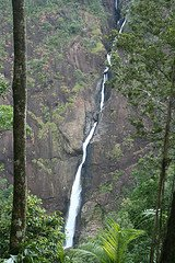 Read more about the article Tallest Waterfalls in Australia