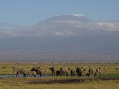 List of Highest Mountains in Africa