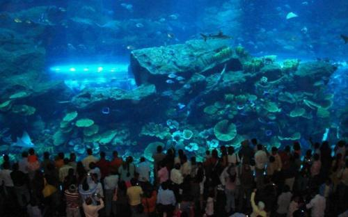 Read more about the article List of Amusement Parks and Centers in Dubai
