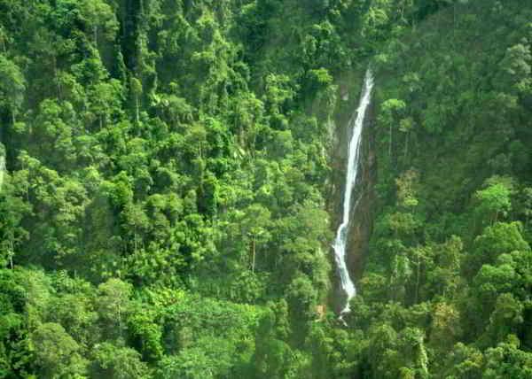 Kijang falls