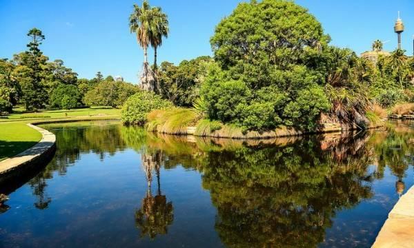Sydney Royal Botanical