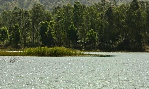 Thattekere Lake