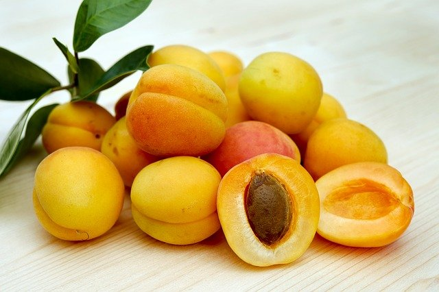 Read more about the article World's Largest Apricots Producing Countries